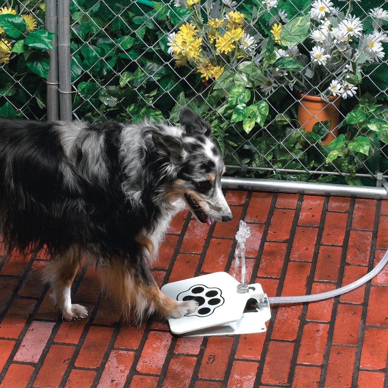 lifebuzz b99aaa066c7d2298906fac96ea40caf3 limit 2000 20 Περίεργα πράγματα που μπορείς να αγοράσεις για τον σκύλο σου…Το #5 είναι φανταστική ιδέα.