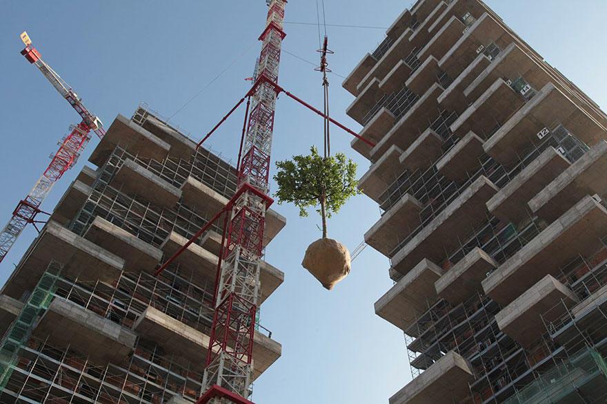 apartment-building-tower-trees-tour-des-cedres-stefano-boeri-20