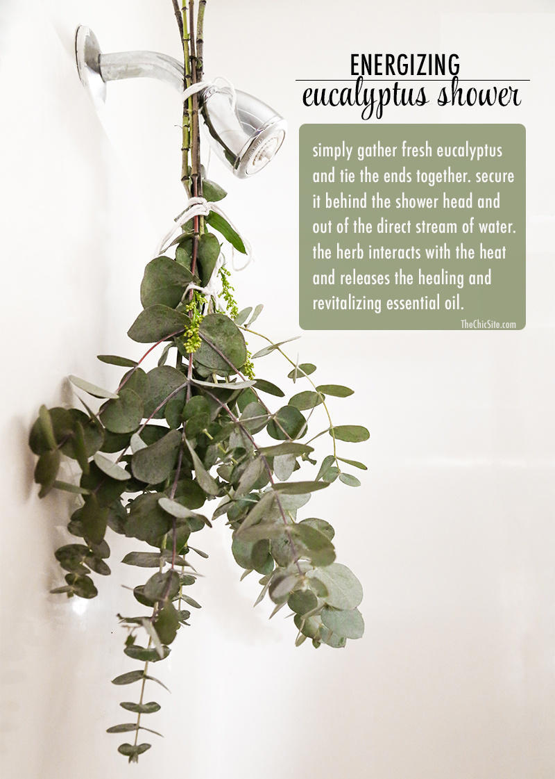 Hang long sprigs of fresh eucalyptus in your bathroom for an aromatic shower experience.
