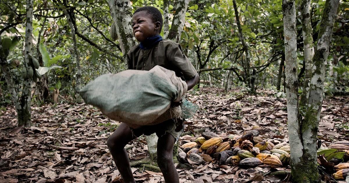 Τα παιδιά που τρώνε τις σοκολάτες και τα παιδιά που…φτιάχνουν τις σοκολάτες