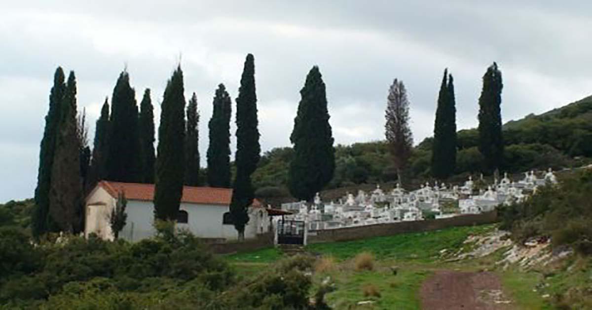 Αποκλείεται να το ήξερες: Για ποιο λόγο φυτεύουν κυπαρίσσια στα νεκροταφεία;