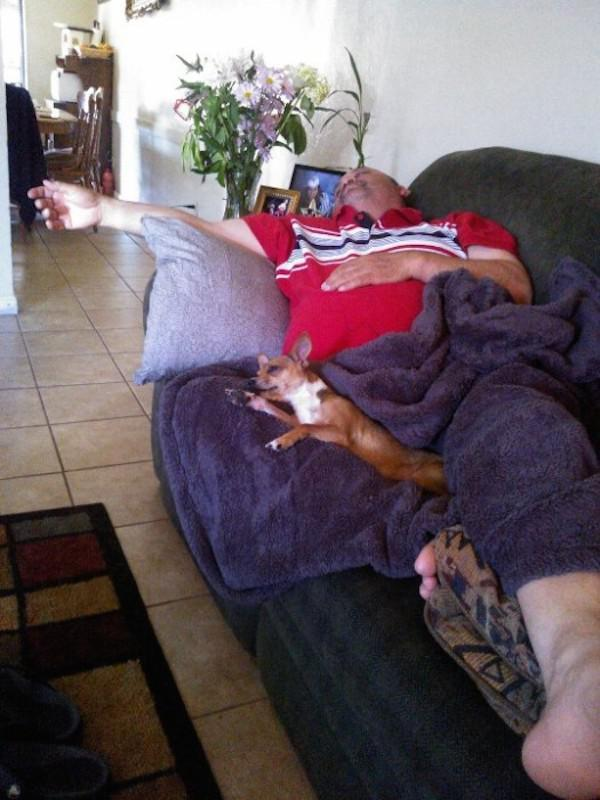 pictures-that-only-dog-lovers-will-truly-appreciate-15