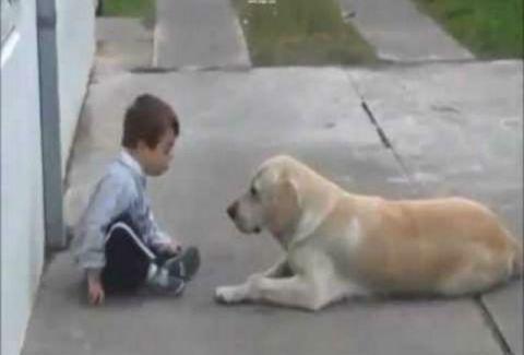 Πόση αγάπη μπορεί να χαρίσει ένα σκυλί σε ένα παιδί με σύνδρομο Down; Ένα βίντεο που πρέπει να δείτε
