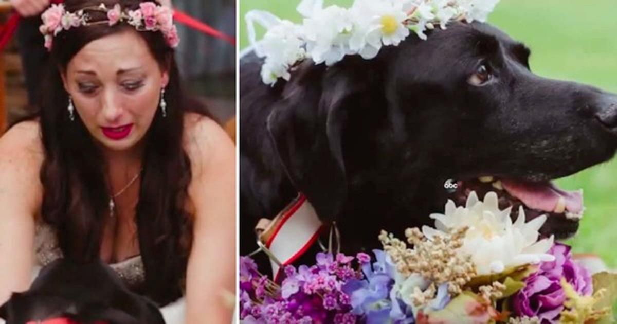 Νύφη ξεσπάει σε δάκρυα όταν λέει το τελευταίο αντίο στον ετοιμοθάνατο σκύλο της την ημέρα του γάμου της.