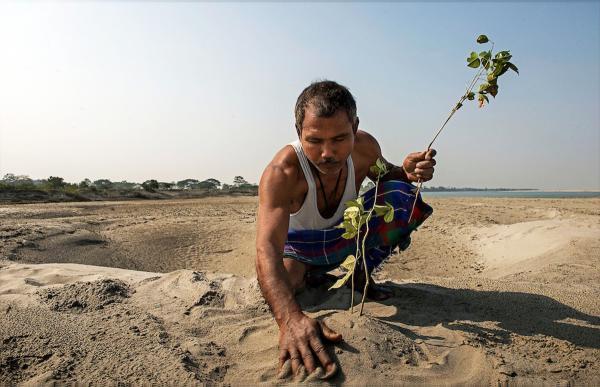 Ο άνθρωπος που έφτιαξε μόνος του ένα δάσος (Βίντεο)