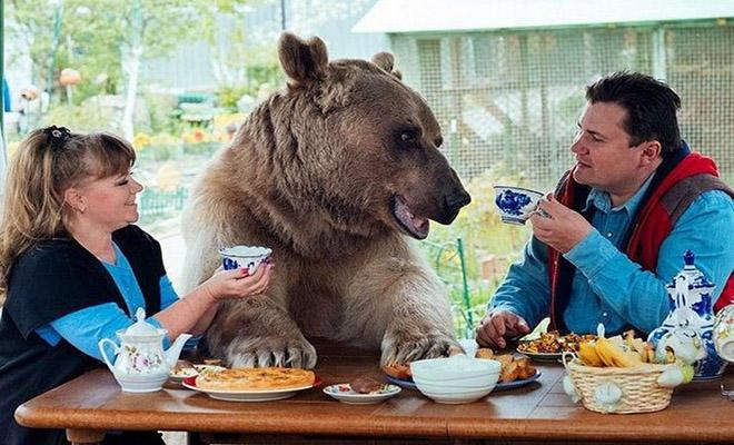 Πριν από 23 χρόνια βρήκαν ένα μικρό ορφανό αρκουδάκι. Σήμερα ζει ακόμα μαζί τους μέσα στο σπίτι τους!