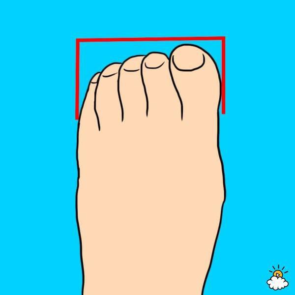 Το σχήμα των ποδιών