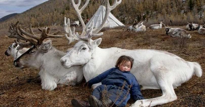 16 συγκλονιστικές φωτογραφίες από τη ζωή και την κουλτούρα της τελευταίας Μογγολικής φυλής που θα σας κόψουν την ανάσα