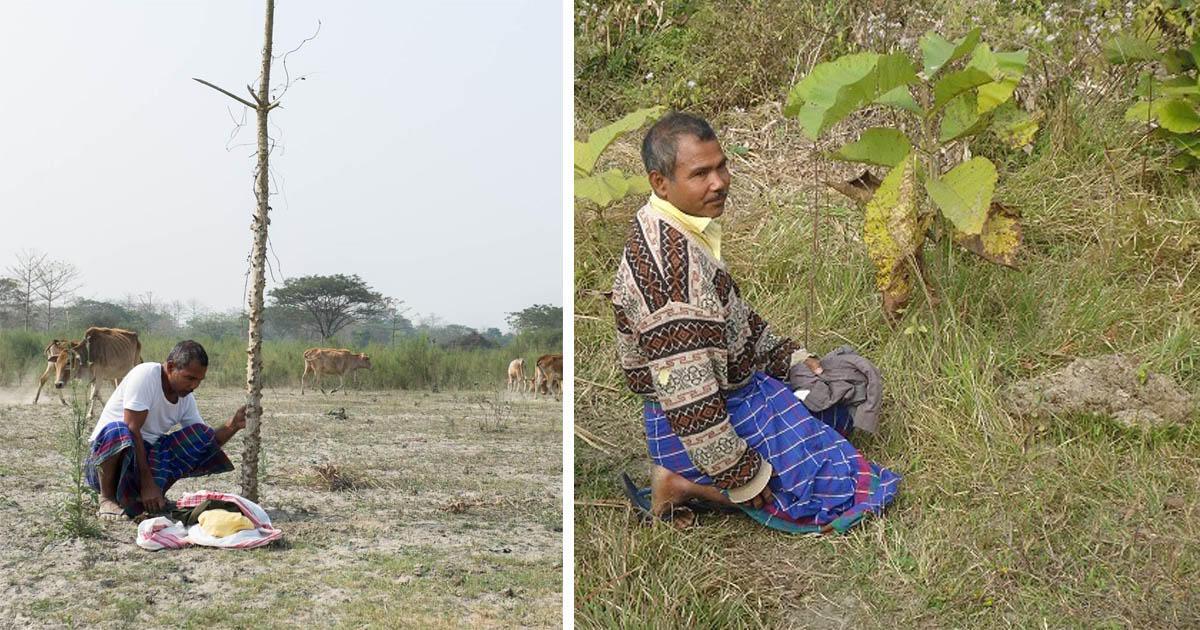 Αυτός ο άνδρας έσωσε το νησί του φυτεύοντας ένα δέντρο κάθε μέρα για 37 ολόκληρα χρόνια