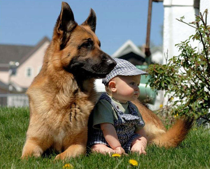 kids-with-dogs-72__700