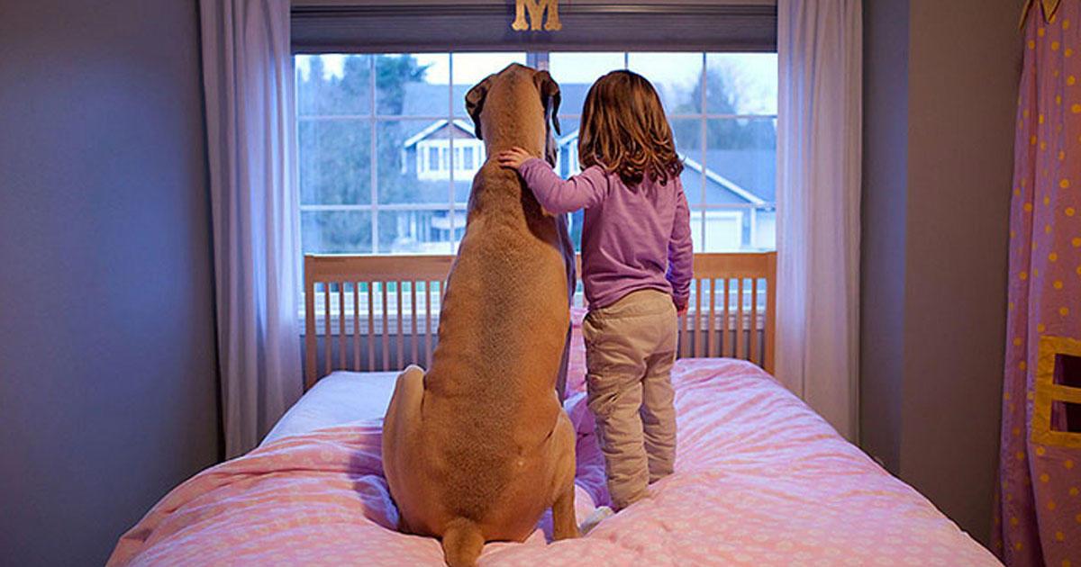 20 τρυφερές φωτογραφίες που δείχνουν ότι όλα τα παιδιά πρέπει να μεγαλώνουν με ένα σκύλο