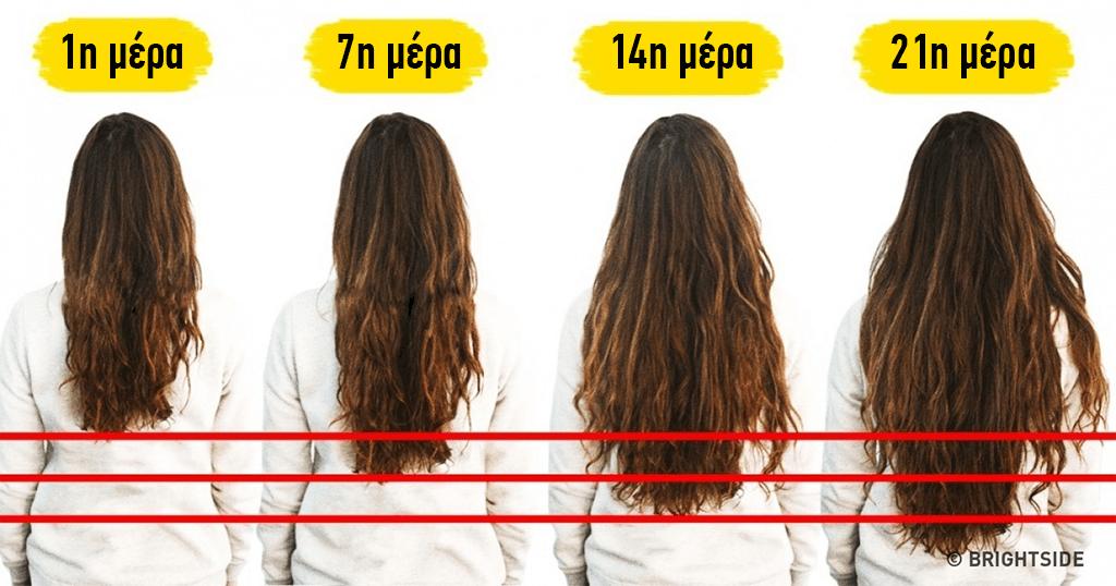 7 τροφές που βοηθούν να μεγαλώσουν τα μαλλιά σας γρήγορα – διαφορετικό f714671bcc3