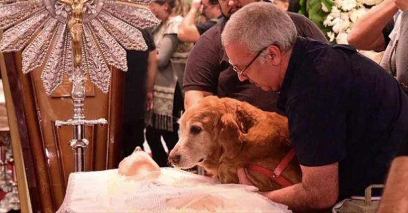 Το σκυλί έκλαιγε με λυγμούς πάνω από το φέρετρο του αφεντικού του. Προσέξτε όμως το βλέμμα του μόλις πάνε να το σηκώσουν