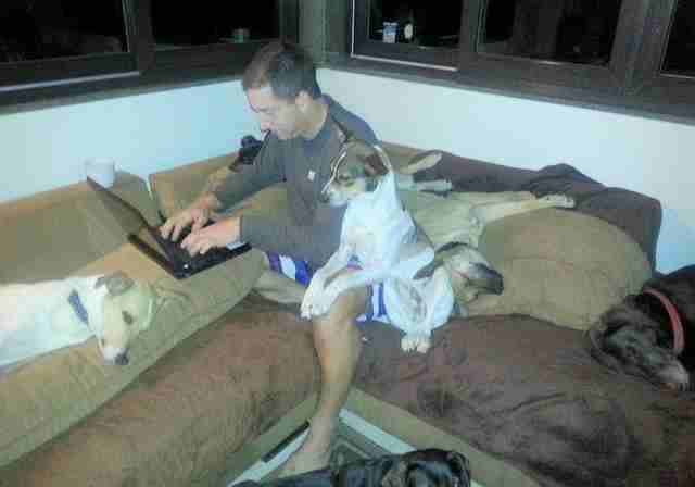 glenn greenwald with his dogs