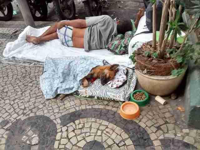 homeless dog and homeless man sleeping on street