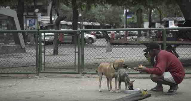 still from field of vision birdie man feeding dog on street