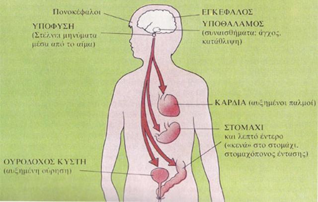 Ψυχοσωματικά: Τα σημεία του σώματος που μπορεί να χτυπήσει το άγχος