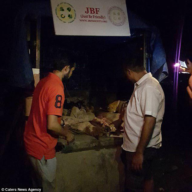 Pictured: Just Be Friendly workers stand by the desperate dogs, who were rescued from sacks