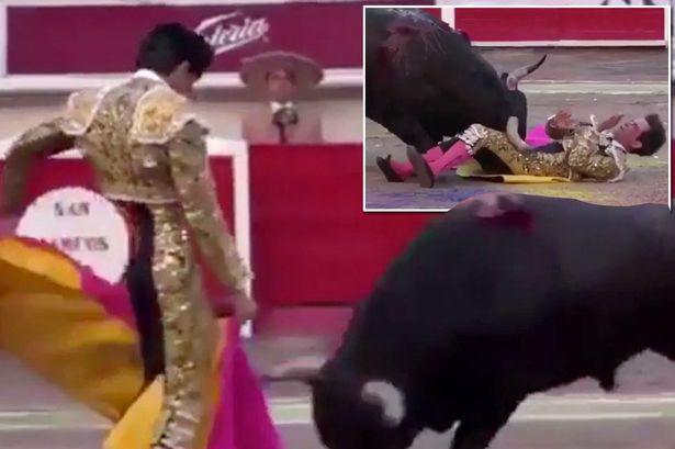 Ο ταύρος κάρφωσε τον ταυρομάχο στον λαιμό και εκείνος επέστρεψε στην αρένα και τον σκότωσε