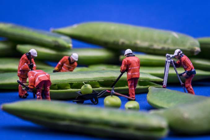 Φωτογράφος δημιουργεί μικροσκοπικούς κόσμους χρησιμοποιώντας καθημερινά αντικείμενα (10)
