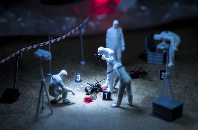 Φωτογράφος δημιουργεί μικροσκοπικούς κόσμους χρησιμοποιώντας καθημερινά αντικείμενα (11)