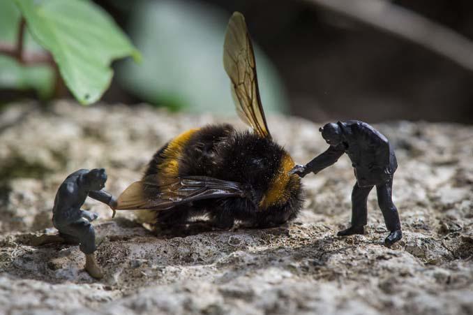 Φωτογράφος δημιουργεί μικροσκοπικούς κόσμους χρησιμοποιώντας καθημερινά αντικείμενα (15)