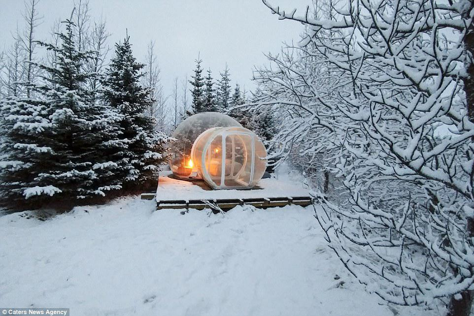 Home comforts: Each individual bubble - located around an hour outside Reykjavik - links to a shared bathroom and kitchen