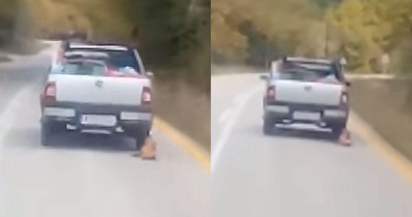 Καλάβρυτα: Οδηγός αγροτικού σέρνει σκύλο που τον έχει δέσει στο αγροτικό του
