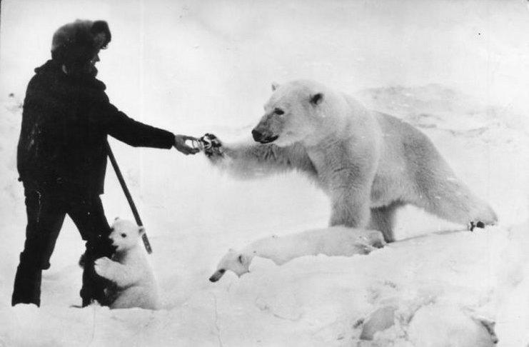 Ο άνδρας ταΐζει την πολική αρκούδα την ώρα που το μωρό της τον αγκαλιάζει με τρυφερότητα. Η συγκινητική ιστορία μιας φωτογραφίας
