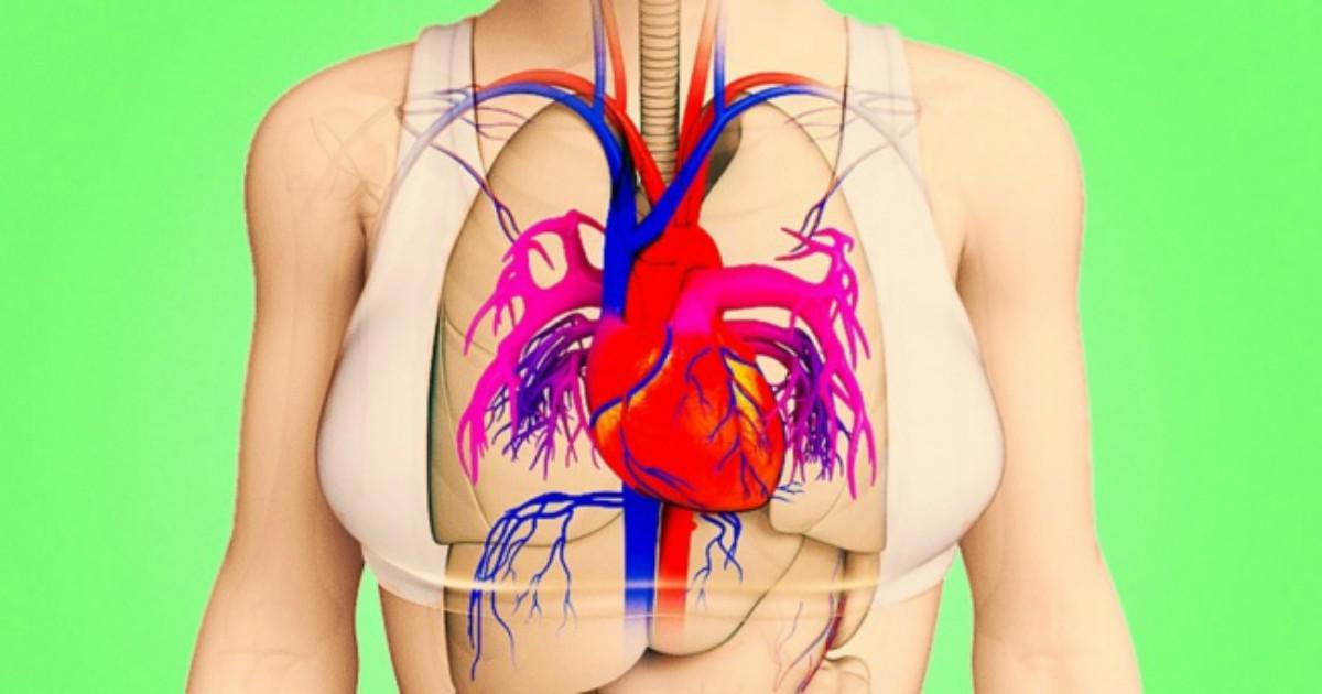 Ένα μήνα πριν το έμφραγμα το σώμα σου θα σου στείλει 8 προειδοποιητικά σημάδια