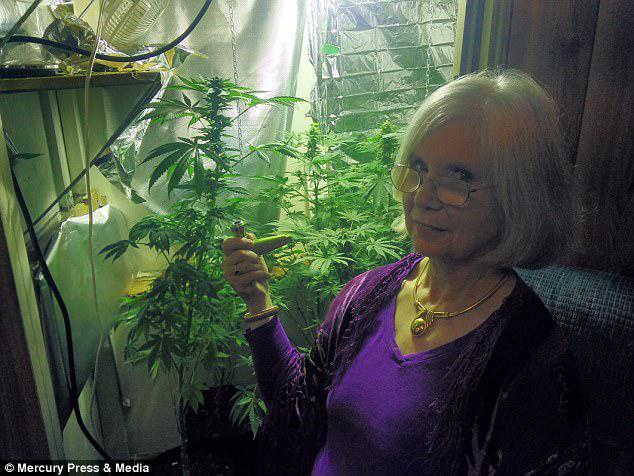 Η κ. Francey προσθέτει ότι η μαριχουάνα βελτιώνει την ποιότητα ζωής των ηλικιωμένων και διευκολύνει τις ανησυχίες