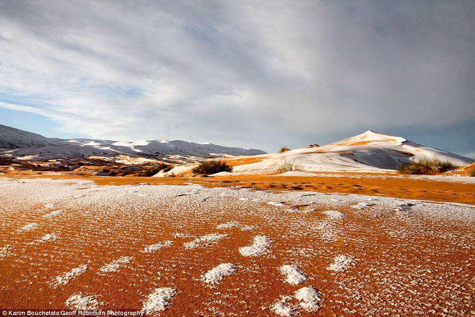 Footsteps: The snowy footprints of people walking on the snow is all that remains as the dunes are heated up