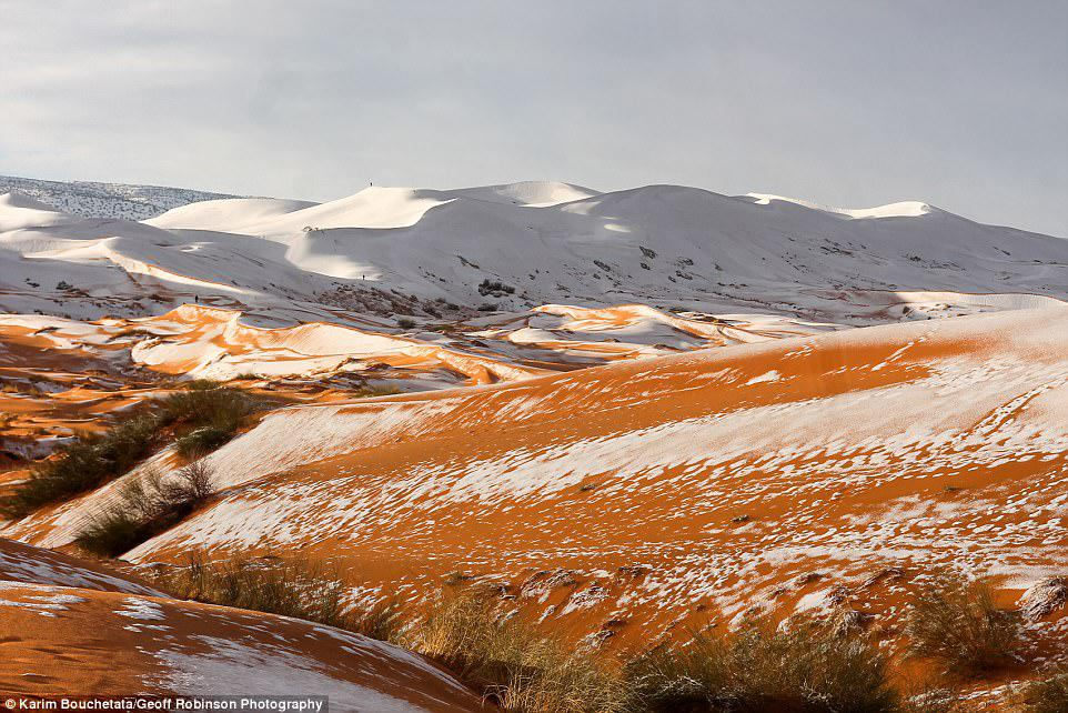Unusual: The Saharan desert town has only seen snow three times int he past 37 years - in 1979, in 2016 and in 2017