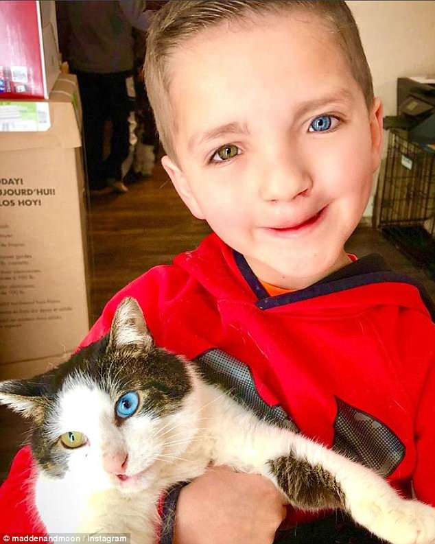 However he found the perfect companion after adopting the cat named Moon, pictured above, who shares a cleft palate as well as a left blue eye and a right green eye just like Madden
