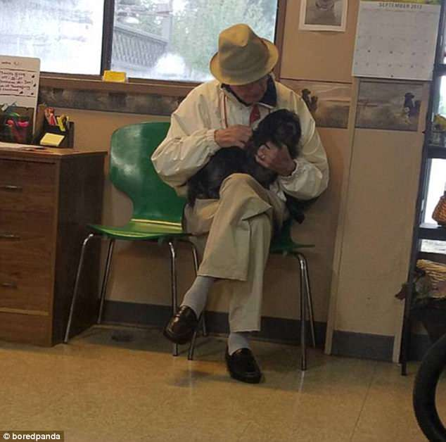 This man has paid regular visits to his local grooming parlour since his own pooch passed away just to spend time with some canines