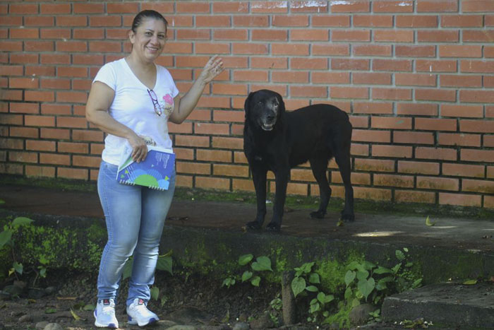 Image result for dog pays with leaf