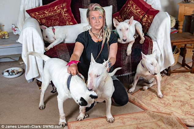 Mrs Haslam has taken in around two hundred rescue dogs over the years, as well as keeping holiday dogs that pay her a wage to cover her rent and bills
