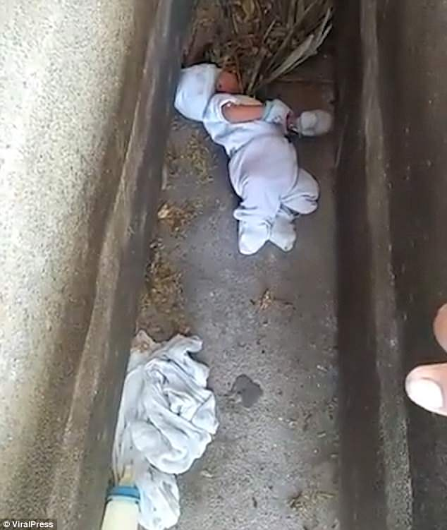 The infant was found on the hard concrete between two tombs lying partly on dead leaves, in a cemetery frequented by rats and stray dogs