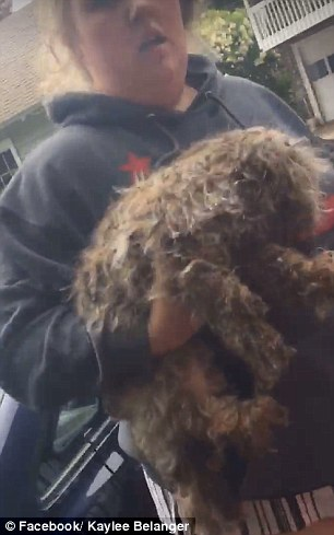 The rescue of the dog was caught on camera by Kaylee Belanger and posted to Facebook