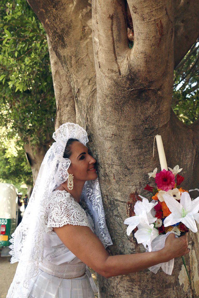Γυναίκες στο Μεξικό παντρεύονται δέντρα για να τα σώσουν 5