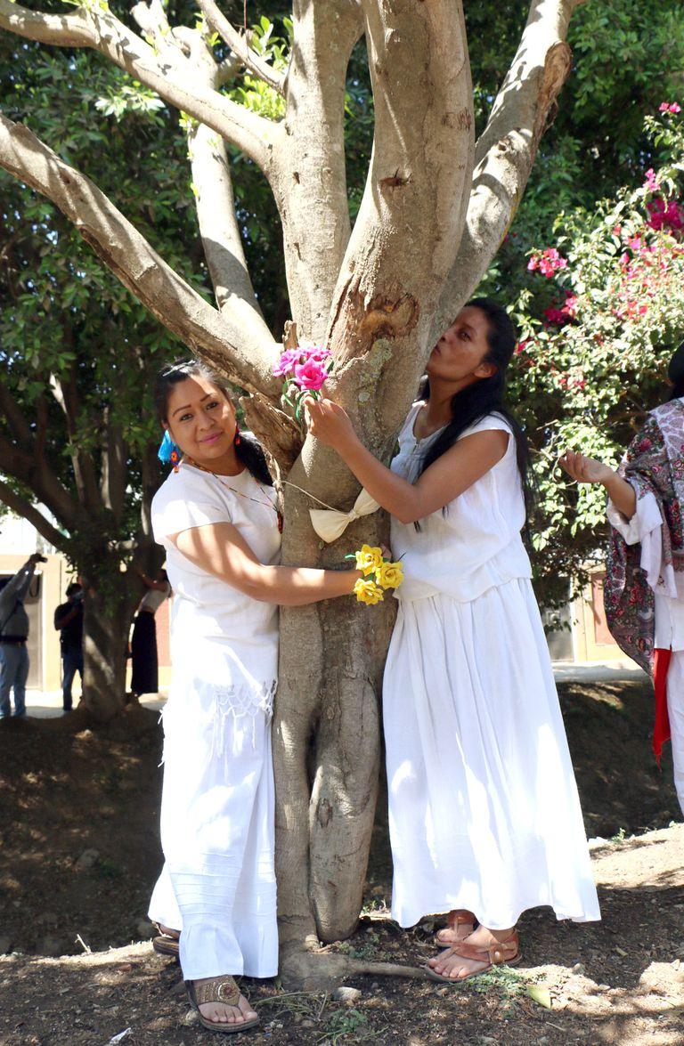 Γυναίκες στο Μεξικό παντρεύονται δέντρα για να τα σώσουν 2