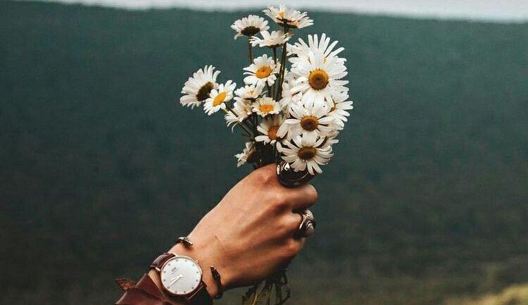 En la simplicidad reside la belleza y la felicidad. - diferente